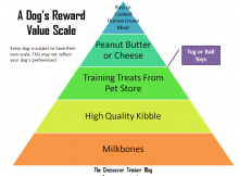 Dog Reward Value Scale